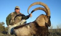 Jim-Bob-Salter-Trophy-Ibex-