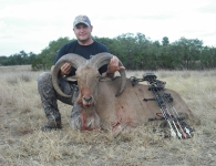 James Goerig Trophy Aoudad 34 August 2013