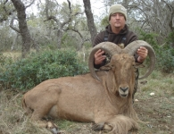 Scott Quarles Trophy Aoudad December 2013
