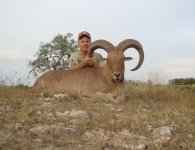 Mike Richey Trophy Aoudad August 2014