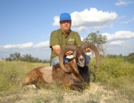 Scott Quarles Mouflon October 2014