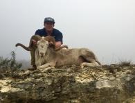 Aaron Nance Texas Dall